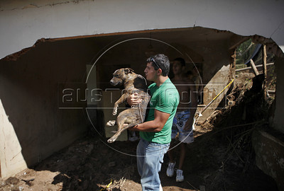 A volunteer rescues a wounded dog from a destroyed house by tragic mudslide in Nova Friburgo, Rio de Janeiro state, Brazil, January 22, 2011 . Many volunteers are helping save hundred pets and others animals that were left behind by their owners or lost after they proprietors are killed in the mudslide in the mountainous region, when a massive wall of water descended narrow valleys, carrying away anything in it's path. (Austral Foto/Severino Silva)