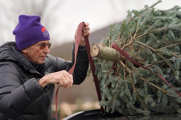 BEN GARVER — THE BERKSHIRE EAGLE<br /> David Horton ties a Christmas tree to the roof of his car at Ioka Valley Farm in Hancock,  Mass., Friday, November 29, 2019.