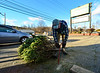 KRISTOPHER RADDER - BRATTLEBORO REFORMER <br /> Isaac Rowelo, of Danjou Tree Farm, on Putney Road, cuts off the bottom of the tree to help keep it fresh during the holiday season on Friday, Dec. 9, 2016.