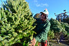 "KRISTOPHER RADDER - BRATTLEBORO REFORMER <br /> Loic Danjou, 57, owner of Danjou Tree Farm, from Canaan, Vt., has been at the Black Mountain Inn location for the past six years. ""When I first opened up, people said I haven't seen $20 trees in years, a lot of people tell me, the elderly and young, that if it wasn't for me they wouldn't have the money to buy a tree,"" said Danjou."
