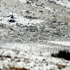 The remains of the Cirrus SR20 and its parachute are covered in snow Sunday morning.<br /> At least three people died Saturday afternoon after two planes, one of them pulling a glider, collided in north Boulder, scattering debris over 115 acres of open space.<br /> Cliff Grassmick / February 7, 2010