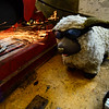 KRISTOPHER RADDER - BRATTLEBORO REFORMER<br /> Some of the sheep wear protective eyewear while Walter Hagedorn, the creator of The Love Sheep, cuts into a piece of metal as they prepare for they July 6 launch.