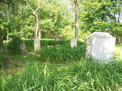 NIKKI RHOADES / GAZETTE Growth among headstones and markers at Windfall Cemetery is shown.