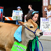 KRISTOPHER RADDER - BRATTLEBORO REFORMER<br /> As thousands of people enjoy the Strolling of the Heifers Parade a small group protesters held signs and walked the parade route to protest the dairy industry on Saturday, June 2, 2018.