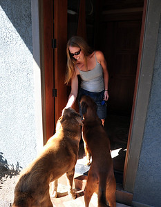 Stephanie O'Hearn greets her two dogs that feel good about being home. Richard Nuzzi and Stephanie O'Hearn are near completion of rebuilding their home after losing the previous one in the Four Mile Canyon Fire last year. For a video and more photos from the fire rebuilding, go to www.dailycamer.com. Cliff Grassmick / August 25, 2011
