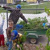 Chadron State College grounds worker Charlie Wood and Child Development Center students load branches pruned in the CDC's north play yard Friday, April 21, 2017. (Courtesy photo)