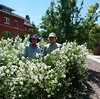 Charlie Wood and Andrew Smith, Chadron State College maintenance workers, pose with mock orange blossoms between Old Admin and Sparks Hall July 6, 2018. (Courtesy photo)