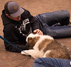 A Chadron State College student participates in Fall Finals Pet Therapy co-sponsored by Project Strive and Residence Life Association Tuesday, Dec. 11, 2018, in the Student Center. (Tena L. Cook/Chadron State College) — at Chadron State College.