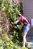 Chadron State College student Brittany Soukup trims a lilac bush at a Chadron resident's house during The Big Event Saturday, April 22, 2017. (Photo by Kelsey R. Brummels/Chadron State College)