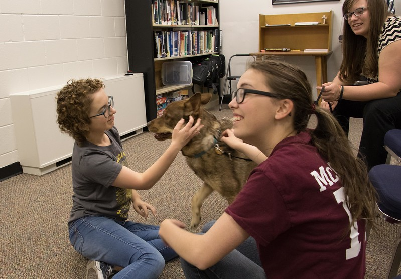 Chadron State College students, from left, Lydia Privety of Wahoo, Neb., and Ashley Heelan of Lewellen, Neb., participate in pet therapy during finals week Tuesday, May 2, 2017, in the Project Strive/TRiO office. (Photo by Tena L. Cook/Chadron State College)
