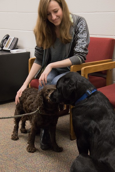 Chadron State College student Donita Enevoldsen of Potter, Neb., participates in pet therapy during finals May 3, 2017, in the Project Strive/TRiO office. (Photo by Tena L. Cook/Chadron State College)