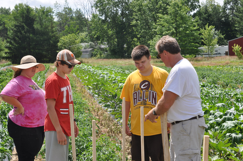 ASHLEY FOX / GAZETTE Left to right, Jessica Scott, Kyle Brady, Alex Ely, all 17 and from Medina, learn to stake tomato plants by job coach Jeffrey Schmidt at Richardson's Farm in Medina on Wednesday afternoon.