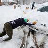 Matt Bataglia helps a neighbor get his car unstuck on University Hill in Boulder, Colorado  after a winter snowstorm.<br /> Photo by Paul Aiken / The Camera / February 3, 2012