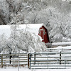 "A barn south of Longmont makes a nice winter scene on November 2, 2011.<br /> For more photos of the snow, go to  <a href=""http://www.dailycamera.com"">http://www.dailycamera.com</a>.<br /> Cliff Grassmick / November 2, 2011"