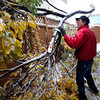 Gary Urling helps clear a fallen branch from his neighbor's driveway in Boulder.<br /> Photo by Paul Aiken