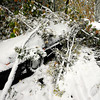 A car sits buried under fallen limbs on Mapleton Hill in Boulder.<br /> Photo by Paul Aiken