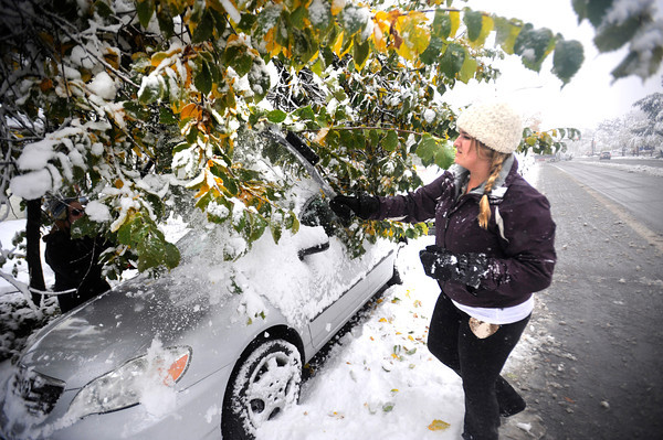 Lauren Finn tries to knock snow off branches as her car sits buried under the bend  limbs of a tree on University Hill in Boulder.<br /> Photo by Paul Aiken