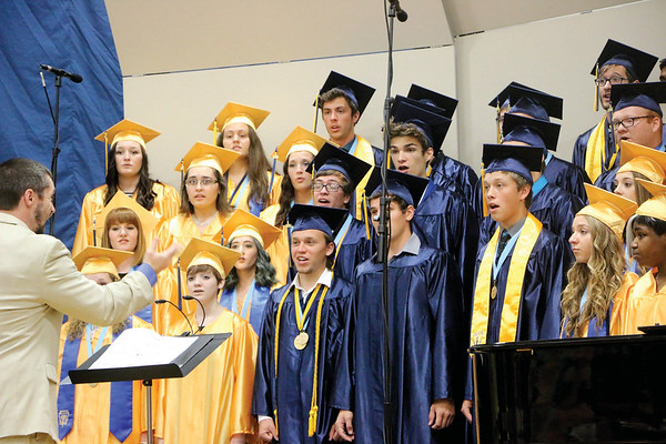 """LYNNE ZEHR 