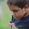 HALEY WARD | THE GOSHEN NEWS<br /> Second grader Parker Kintigh leans in to smell a flower during a Benton Elementary School field trip Thursday at the garden at Greencroft Communities.