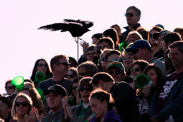 "STACEY DIAMOND | THE GOSHEN NEWS<br /> Fans of the Northridge Raider Band are shown with the crow mascot Saturday during the band's ""Nevermore"" performance during the Class B semistate competition."