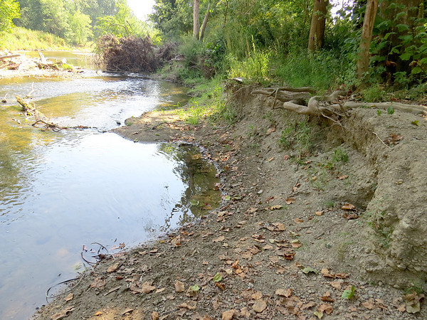 A lot of damage has been done from Eagle Creek near the trail at Starkey Park.