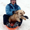 "Sasha Richardson and her dog, Marley, try  a day of sledding at a hill near Sunset Middle School on Sunday Feb. 24, 2013.<br /> For more photos sledding, go to  <a href=""http://www.timescall.com"">http://www.timescall.com</a>.<br /> Cliff Grassmick / February 24, 2013"