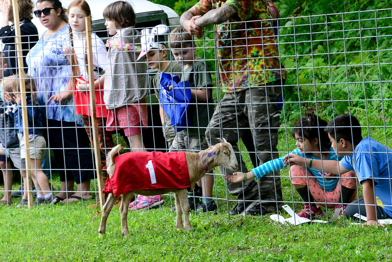 KRISTOPHER RADDER - BRATTLEBORO REFORMER<br /> Maria Bartos, 7, pets a goat during the Strolling of the Heifers Slow Living Expo in Brattleboro, Vt., on Saturday, June 3, 2017.