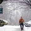 BEN GARVER — THE BERKSHIRE EAGLE<br /> The tree canopy lining Main Street in Lenox, Mass., creates a wintery frame around a man out of the Lenox Library, Wednesday, January 9, 2019.