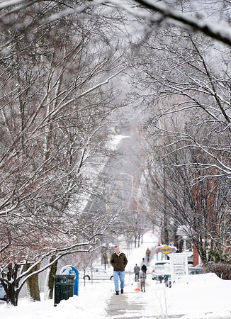 BEN GARVER — THE BERKSHIRE EAGLE<br /> The tree canopy lining Main Street in Lenox, Mass., creates a wintery frame around a man walking up the street, Wednesday, January 9, 2019.