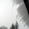 BEN GARVER — THE BERKSHIRE EAGLE<br /> Icicles form on snow creeping off the roof of a barn At Hancock Shaker Village, Tuesday, March 13, 2018.