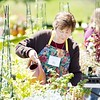 BEN GARVER — THE BERKSHIRE EAGLE<br /> Carol Frechette waters plants for sale at Springside park. The Springside Greenhouse Group Annual Mother's Day sale  runs from 9:00am-4:00pm May 11 and 12.