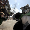 "A boy gives a high-five to a person in a coyote suit during the St. Patricks Day parade on Sunday, March 13, on 13th Street in Boulder. For more photos and video of the parade go to  <a href=""http://www.dailycamera.com"">http://www.dailycamera.com</a><br /> Jeremy Papasso/ Camera"