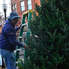 KRISTOPHER RADDER — BRATTLEBORO REFORMER<br /> Dick DeGray and a team of volunteers string up lights on the holiday tree at Pliny Park on Tuesday, Nov. 26, 2019. A group of carolers will be singing as they travel from the Transportation Center around 5 p.m. on Friday, Nov. 29, 2019, to Pliny Park for the annual tree lighting at 5:30 p.m.