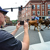 KRISTOPHER RADDER - BRATTLEBORO REFORMER<br /> Tim Donahue, from Northampton, Mass., takes a cell phone photo as the heifers come up Main Street during the annual Strolling of the Heifers Parade on Saturday, June 2, 2018.
