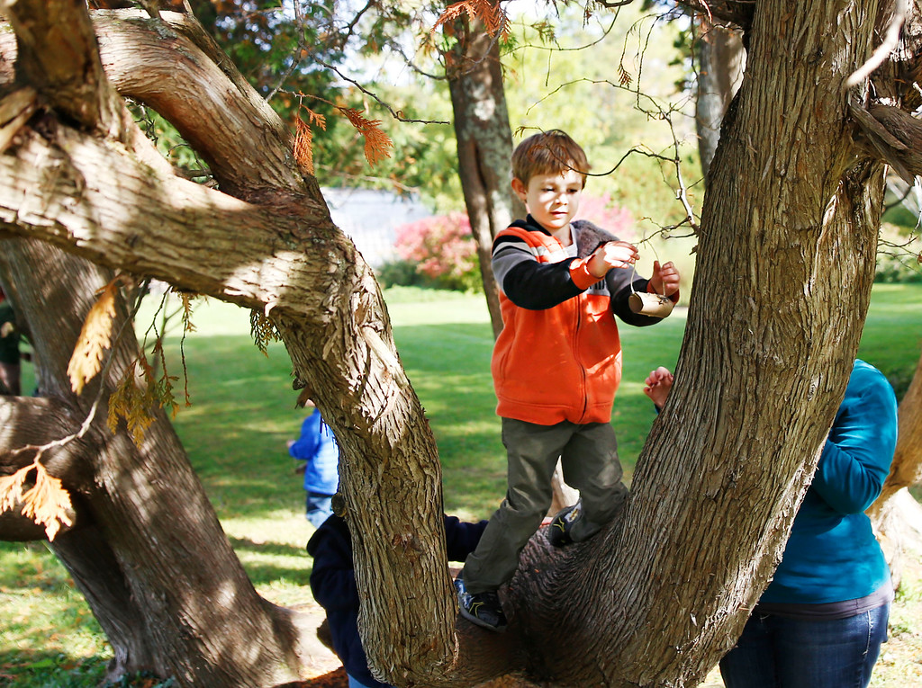 . Kullen O\'Donnell Hangs his finished bird feeder in a tree.