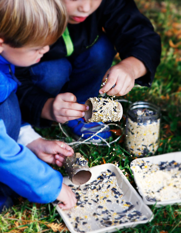 . Students sprinkle nuts and seeds on feeders to feed birds in preperation of the cold season.