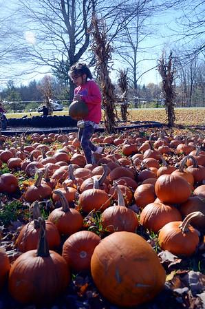 Sunny Sunday at Whitney's Farm - 102316