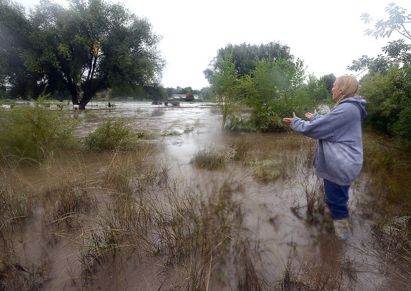 Standing in a flooded field, Bethie Sairob calls to her pregnant goats that are trapped on a patch of land as the Big Thompson River flood waters rise at River Ranch Goats & Gardens in Loveland on Thursday, September 12, 2013. (Photo by Jenny Sparks/Loveland Reporter-Herald)