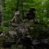 KRISTOPHER RADDER - BRATTLEBORO REFORMER<br /> A meditating frog that was placed by a U.S. Navy Seal at the Warrior Connection in Putney.