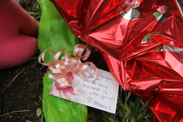 SHERRY VAN ARSDALL | THE GOSHEN NEWS<br /> A makeshift memorial has been created at the site where three people were killed Saturday night in Elkhart and two others were seriously injured when a vehicle drove off the road and onto a sidewalk and struck a group of pedestrians.<br /> The collision happened at 9:19 p.m. at East Beardsley Avenue and Cassopolis Street.