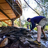 KRISTOPHER RADDER — BRATTLEBORO REFORMER<br /> Dustin Pulliam, the building producer for Treehouse Masters, puts the final touches onto a waterfall on a treehouse that they are working on at the Treehouse Village Inn, in South Newfane, Vt., on Monday, Sept. 3, 2018.