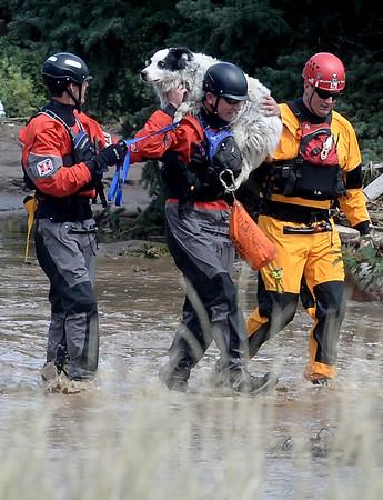 Flood063