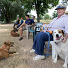 "Rita Anderson, of Boulder, pets Jackie the dog while sitting in the shade on Friday, Aug. 24, at the Valmont Dog Park in Boulder. For a video about the new park go to  <a href=""http://www.dailycamera.com"">http://www.dailycamera.com</a><br /> Jeremy Papasso/ Camera"
