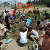 "Protesters get the soil ready to plant sunflowers near the entrance of the Valmont Power Station.<br /> About 150 people rode bikes from the Central Park bandshell to the Valmont Coal Plant to protest its continued opening. The group  then planted sunflowers near the entrance on Saturday. For more a video and photos  of the protest, go to  <a href=""http://www.dailycamera.com"">http://www.dailycamera.com</a>.<br /> Cliff Grassmick / July 16, 2011"