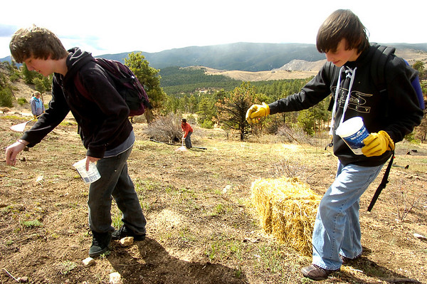 "Kamryn Roper-Fetter, left and Christian DeSouza, work on reseeding a burned hillside as students of the Watershed School work on a 3 day project by the school to reseed areas of the Four Mile Fire burn area in the Sugarloaf Mountain Area. For more photos and a video of the project go to  <a href=""http://www.dailycamera.com"">http://www.dailycamera.com</a> Tobiah Nagle rakes the burned hillside in the background. <br /> Photo by Paul Aiken / The Camera / April 19, 2011"