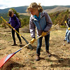 "From left to right, Tobiah Nagle, Sydney Kinsey, Christian DeSouza students of the Watershed School, rake areas to be reseeded, on a 3 day project by the school to reseed areas of the Fourmile Fire burn area in the Sugarloaf Mountain Area. For more photos and a video of the project go to  <a href=""http://www.dailycamera.com"">http://www.dailycamera.com</a><br /> Photo by Paul Aiken / The Camera / April 19, 2011"