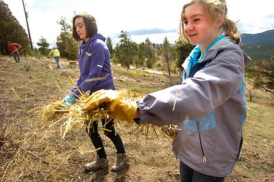 Tobiah Nagle, left, and  Sydney Kinsey,  students of the Watershed School, spread straw over a reseeded hillside on a 3 day project by the school to reseed areas of the Fourmile Fire burn area in the Sugarloaf Mountain Area. For more photos and a video of the project go to www.dailycamera.com Photo by Paul Aiken / The Camera / April 19, 2011