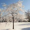 2013-04-23 snowfall 38687