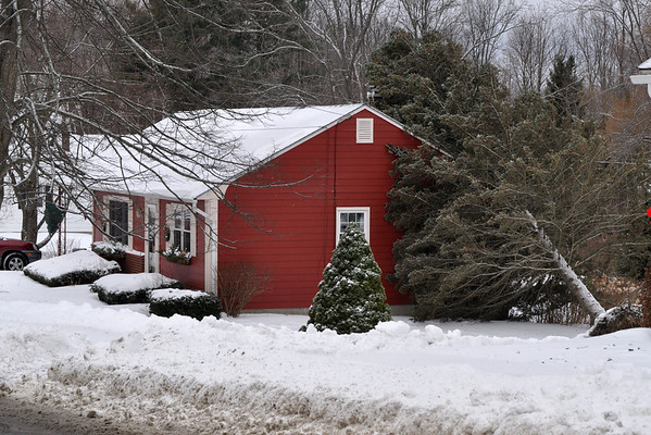 Saturday's Snow Storm - 121513