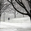 a pedestrian walks in the snow on Tuesday afternoon in Williamstown. December 10th 2013 Holly Pelczynski/Berkshire Eagle Staff